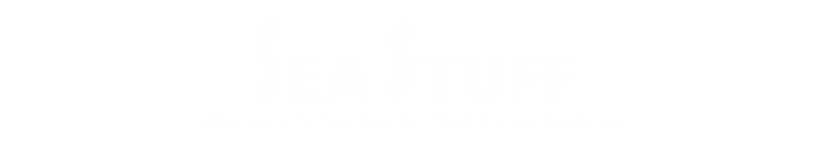 Sea Stuff - Marine Life Guides For Snorkelers & Divers